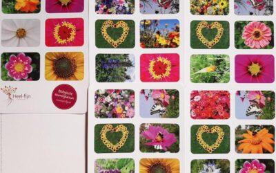 ansichtkaarten uit eigen bloementuin ;-)
